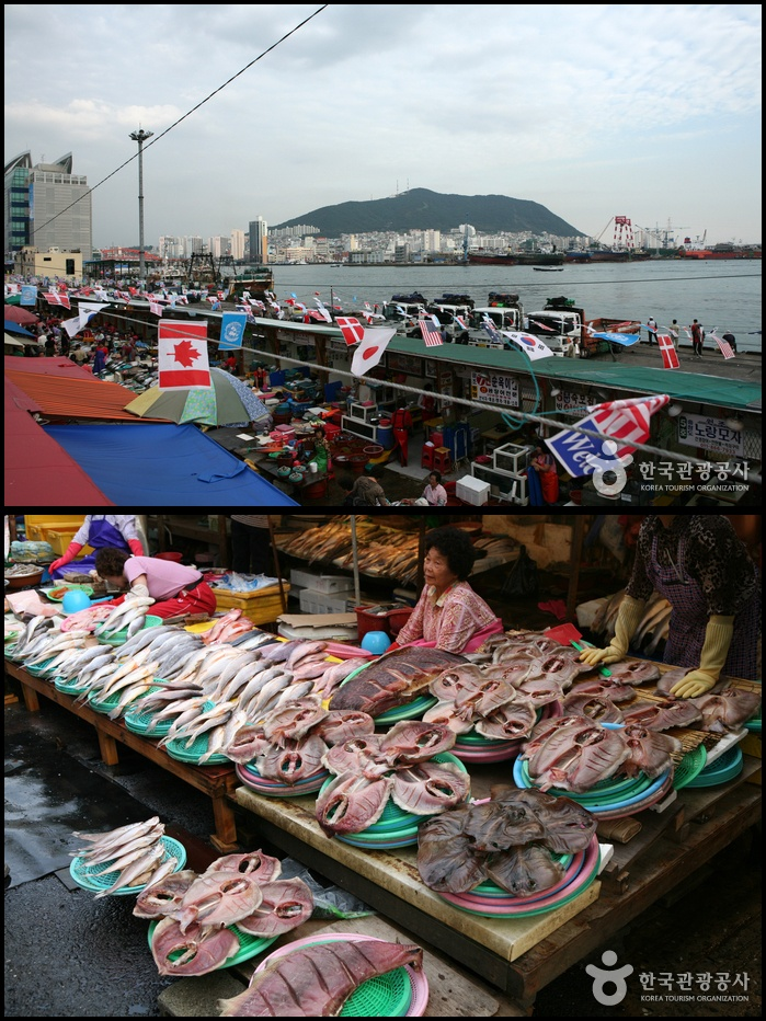Jagalchi Market, Busan