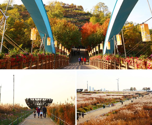 Haneul Sky Park (photo source : KTO)